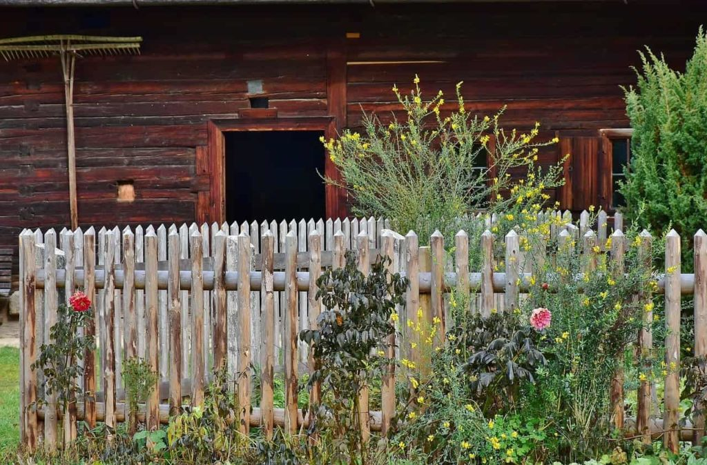 5 Reasons You Need a Fence
